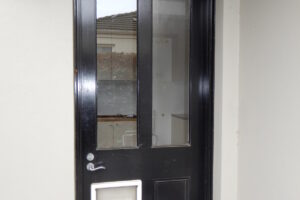 Door Unit, External Door with Dog Door and Frame,  2e